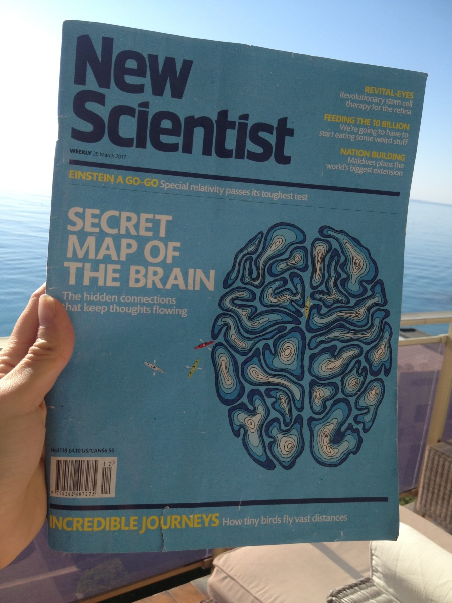 New Scientist: Secret Map Of The Brain.